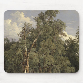 Elm trees in Prater, 1831 Mouse Pad