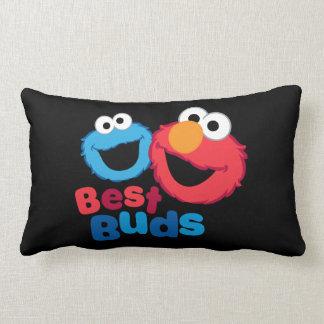 Elmo and Cookie Besties Lumbar Pillow