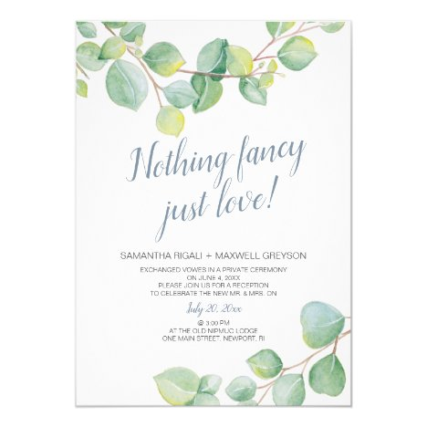 Elopement Reception Nothing Fancy Just Love Invitation