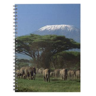 Elphants of Mt.Kilimanjaro Spiral Notebook
