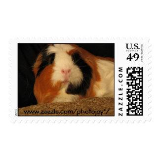 Elsie Postage Stamps