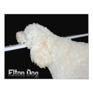 Elton Dog Card