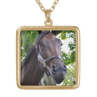 Elusive Quality Filly Gold Plated Necklace