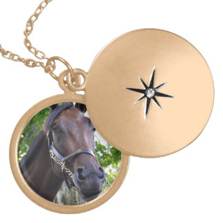 Elusive Quality Filly Locket Necklace