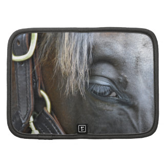 Elusive Quality Filly Folio Planners