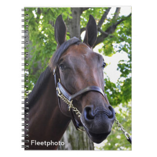 Elusive Quality Filly Spiral Notebook