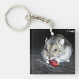 Elvis and the Mulberry Keychain