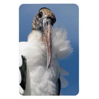 Elvis - Wood Stork - Flexible Magnet