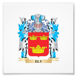 Ely Coat of Arms - Family Crest Art Photo