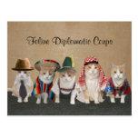 Embajadores del gatito tarjetas postales