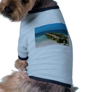 Embarcadero dominante de la siesta camiseta con mangas para perro