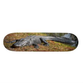 Embarque del cocodrilo skateboards