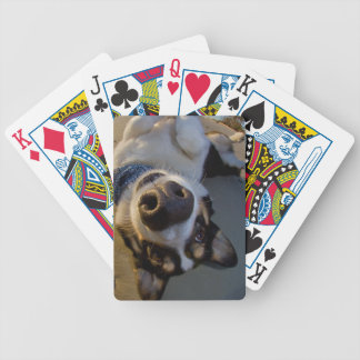 Embarrassing Moment Poker Cards
