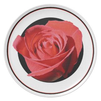 Embase del negro del cierre del rosa rojo plato