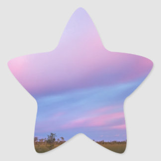 Embers in the Sky over Florida Everglades Star Sticker