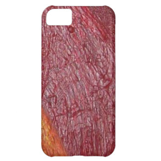Embers iPhone 5C Case