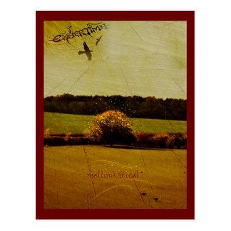 EmberTime - 'Mellowistical' Postcard