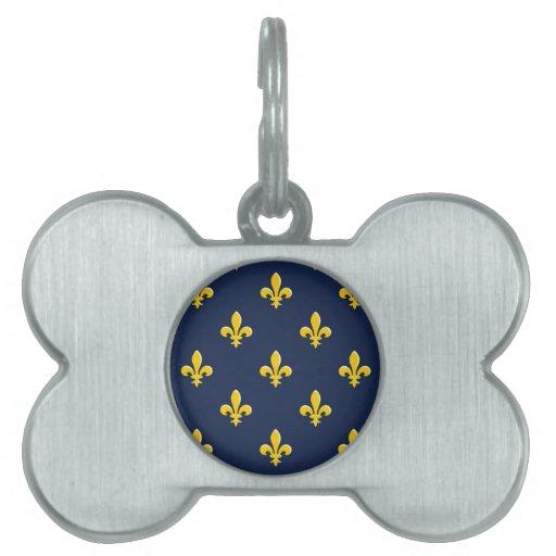 Emblema amarillo del explorador placas de mascota
