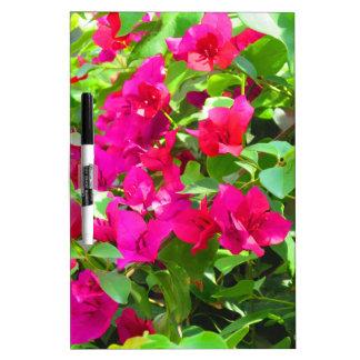 Emblema floral del bougainvillea de la flor del pizarras blancas