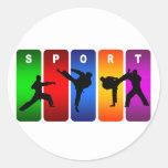 Emblema multicolor del karate pegatina redonda