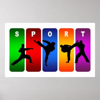 Emblema multicolor del karate póster
