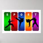 Emblema multicolor del karate posters