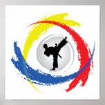 Emblema tricolor del karate póster