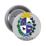 Emblema uruguayo pins