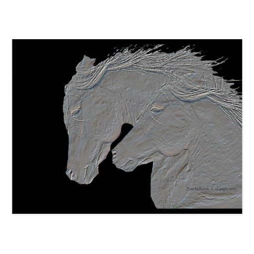 Embossed Horses Postcard