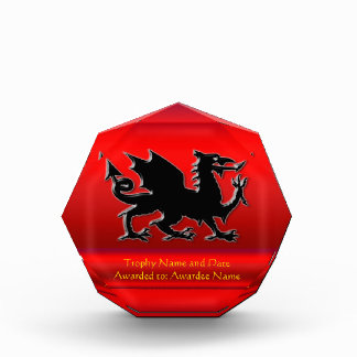 Embossed-look Black Dragon on red chrome-effect Acrylic Award