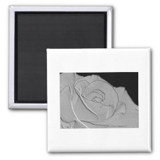Embossed Look Silver Rose 3 Magnet