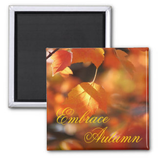Embrace Autumn Changing Leaves Magnet