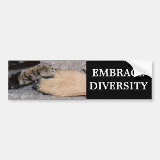 Embrace Diversity Car Bumper Sticker