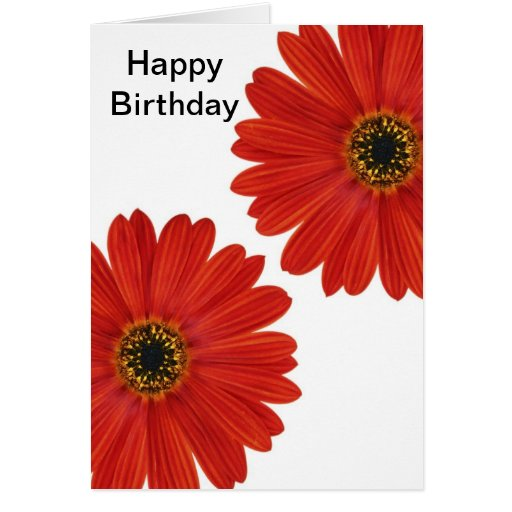 Embrace Happiness Daisies Birthday Greeting Card