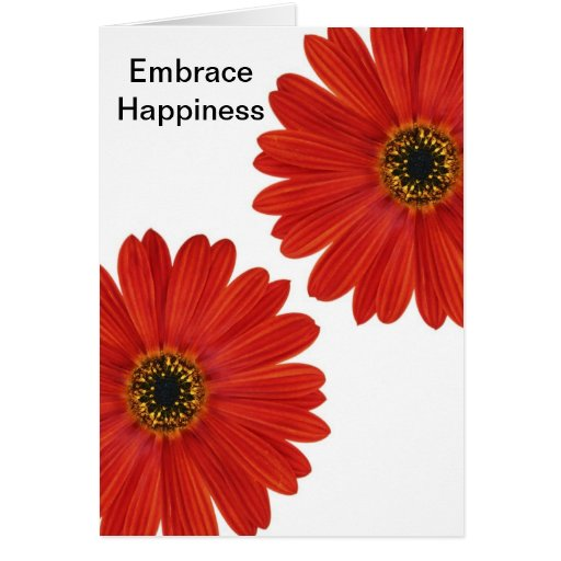 Embrace Happiness Daisies Greeting Cards