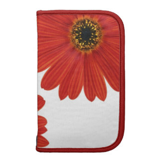 Embrace Happiness Daisies Folio Planners