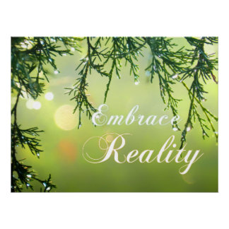 Embrace Reality Cedar Twigs Sparkling Water Drops Poster