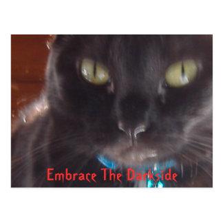Embrace The Darkside Postcard