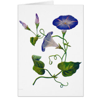Embroidered Blue Morning Glories Card