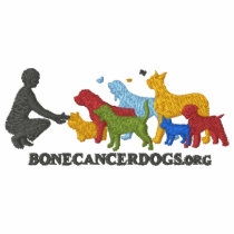 Embroidered Color Logo Sweatshirt