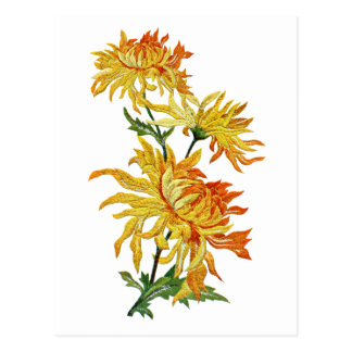 Embroidered Golden Chinese Chrysanthemum Postcard