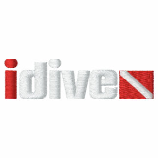 Embroidered idive Hoodie