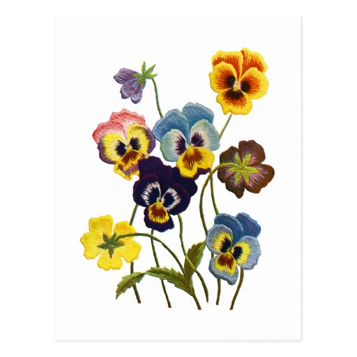 Embroidered Parade of Pansies Postcard