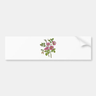 Embroidered Pink Old English Roses Bumper Sticker