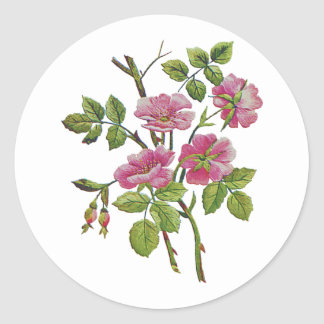 Embroidered Pink Old English Roses Classic Round Sticker