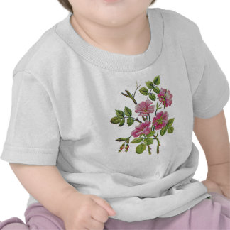 Embroidered Pink Old English Roses Shirt