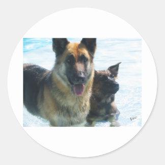 emcdogs etiqueta redonda