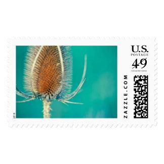 Emerald Bokeh Stamp
