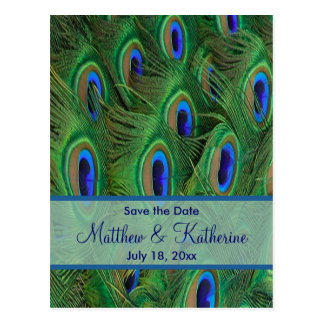 Emerald Green Royal Blue Peacock Feathers Wedding Postcard