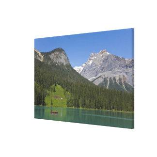 Emerald Lake, Canadian Rockies, British Canvas Print